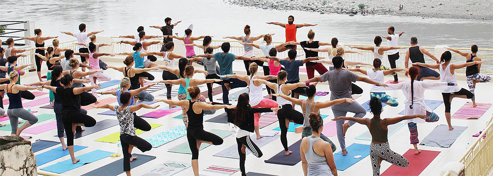 hatha yoga techer training in rishikesh