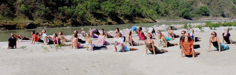 iyengar yoga teacher training india